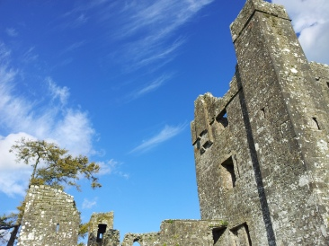 05. Bective Abbey, Co. Meath