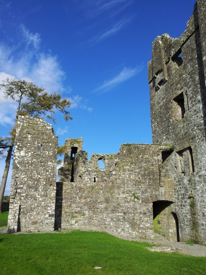 06. Bective Abbey, Co. Meath