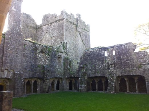 25. Bective Abbey, Co. Meath