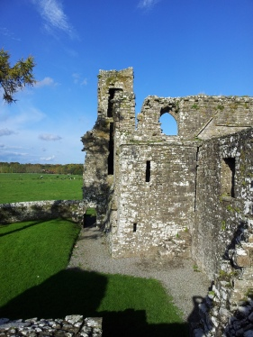 43. Bective Abbey, Co. Meath