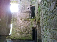 46. Bective Abbey, Co. Meath