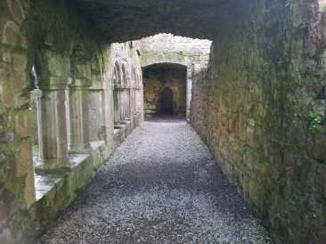 63. Bective Abbey, Co. Meath