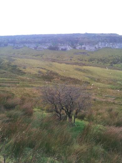 01. Carrowkeel Meglithic Cemetery, Co. Sligo