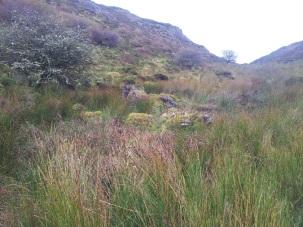 05. Carrowkeel Meglithic Cemetery, Co. Sligo