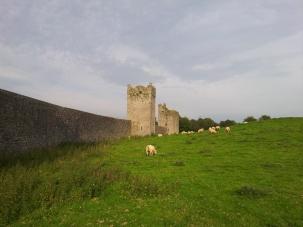 07. Kells Priory, Co. Kilkenny