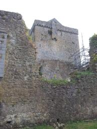 41. Kells Priory, Co. Kilkenny