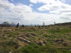 02. Boleycarrigeen Stone Circle, Co. Wicklow