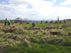 03. Boleycarrigeen Stone Circle, Co. Wicklow