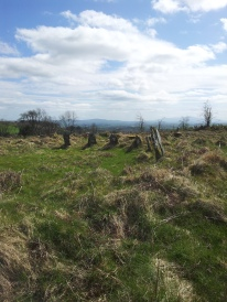 05. Boleycarrigeen Stone Circle, Co. Wicklow