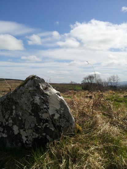 14. Boleycarrigeen Stone Circle, Co. Wicklow