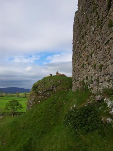 35. Castleroche Castle, Co. Louth