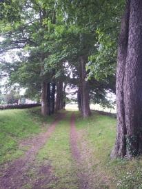 01. Ballyboggan Priory, Co. Meath