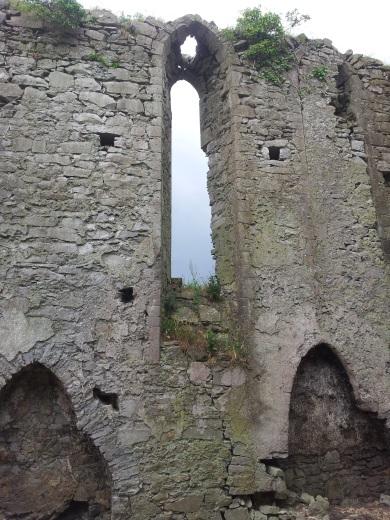 07. Ballyboggan Priory, Co. Meath