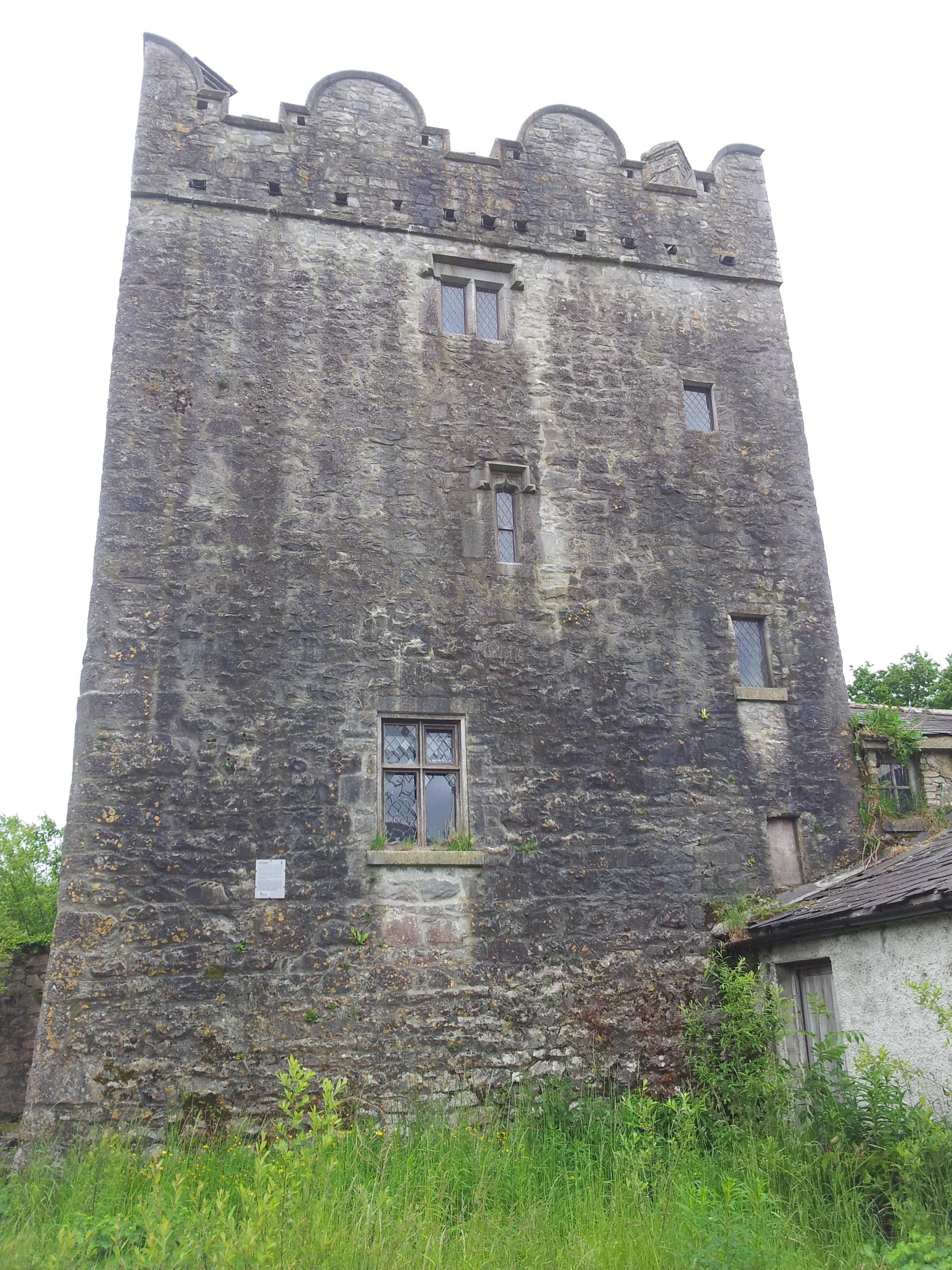 07 grange castle co kildare visions of the past for Kildare castle
