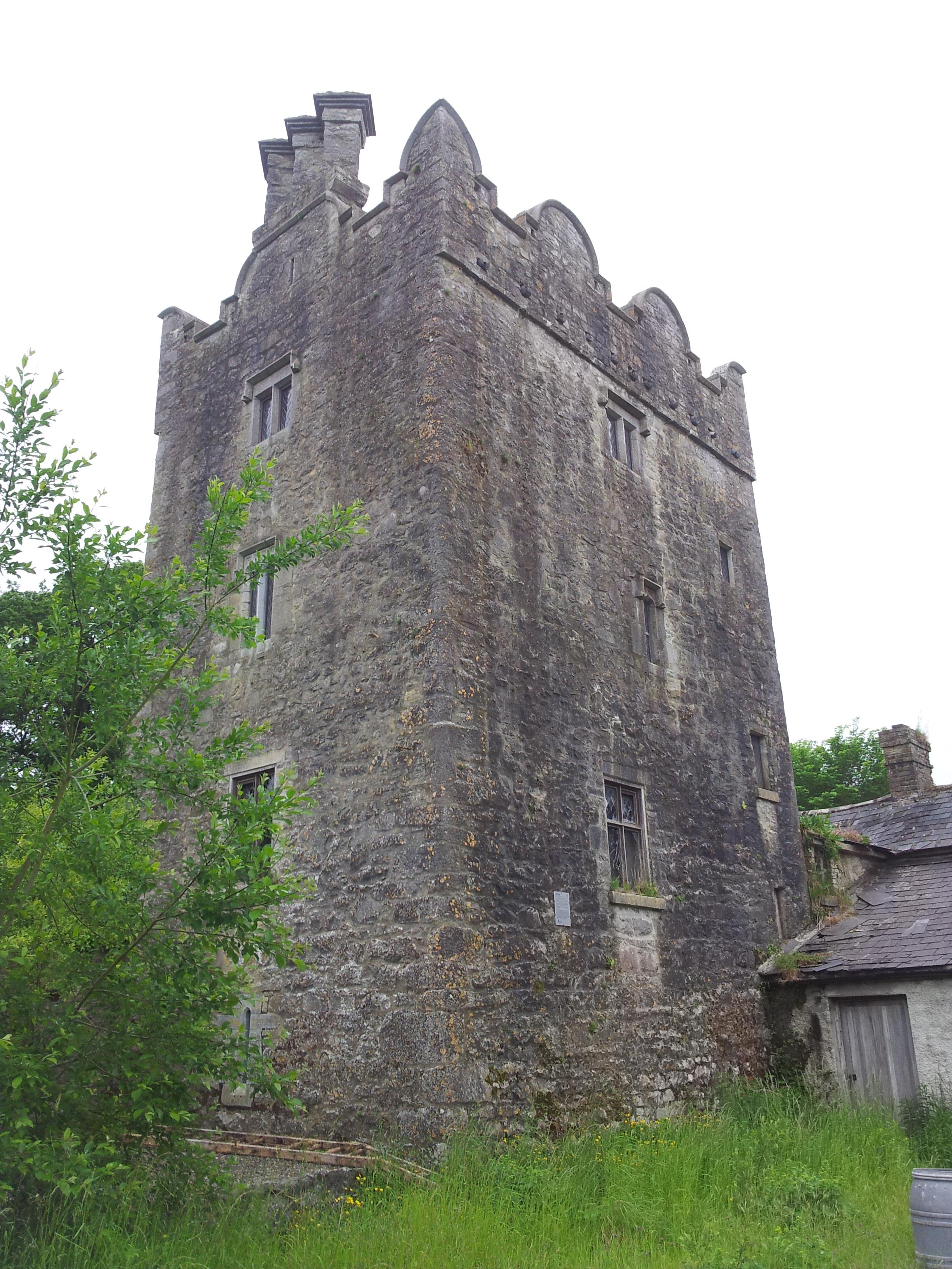 08 grange castle co kildare visions of the past for Kildare castle