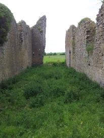 10. Ballyboggan Priory, Co. Meath