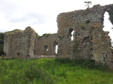 11. Ballyboggan Priory, Co. Meath
