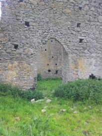12. Ballyboggan Priory, Co. Meath