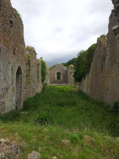 14. Ballyboggan Priory, Co. Meath