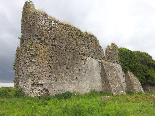 15. Ballyboggan Priory, Co. Meath
