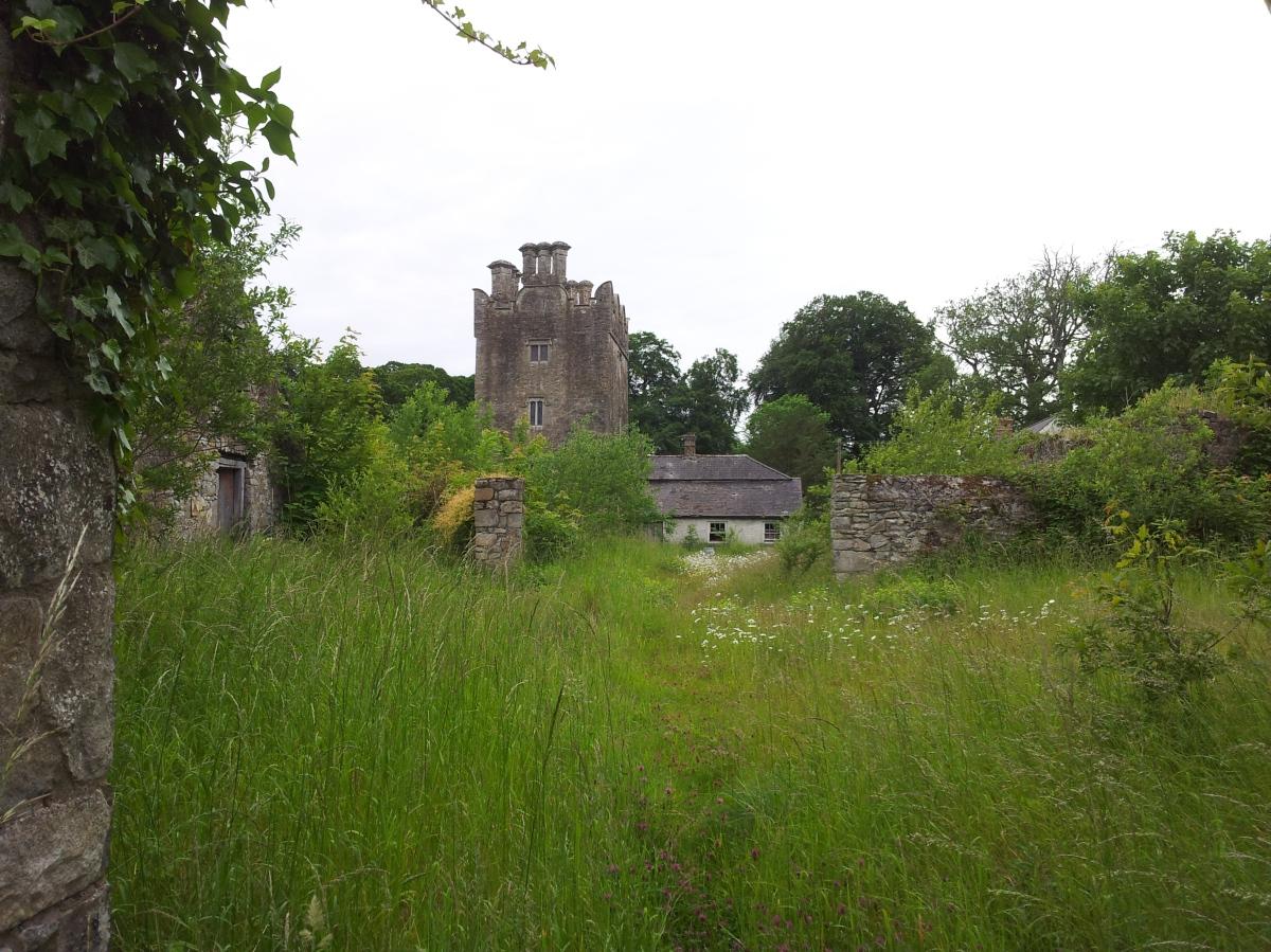 Grange castle kildare ireland visions of the past for Kildare castle
