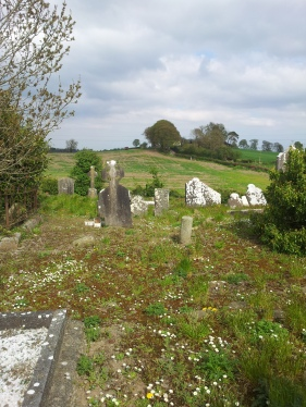 14. Old Tallanstown Graveyard, Co. Louth