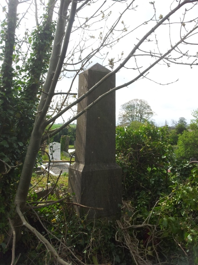 16. Old Tallanstown Graveyard, Co. Louth