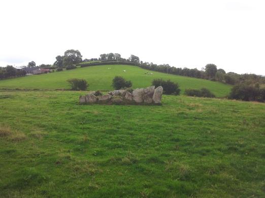 01. Lisnadarragh Wedge Tomb, Co. Monaghan