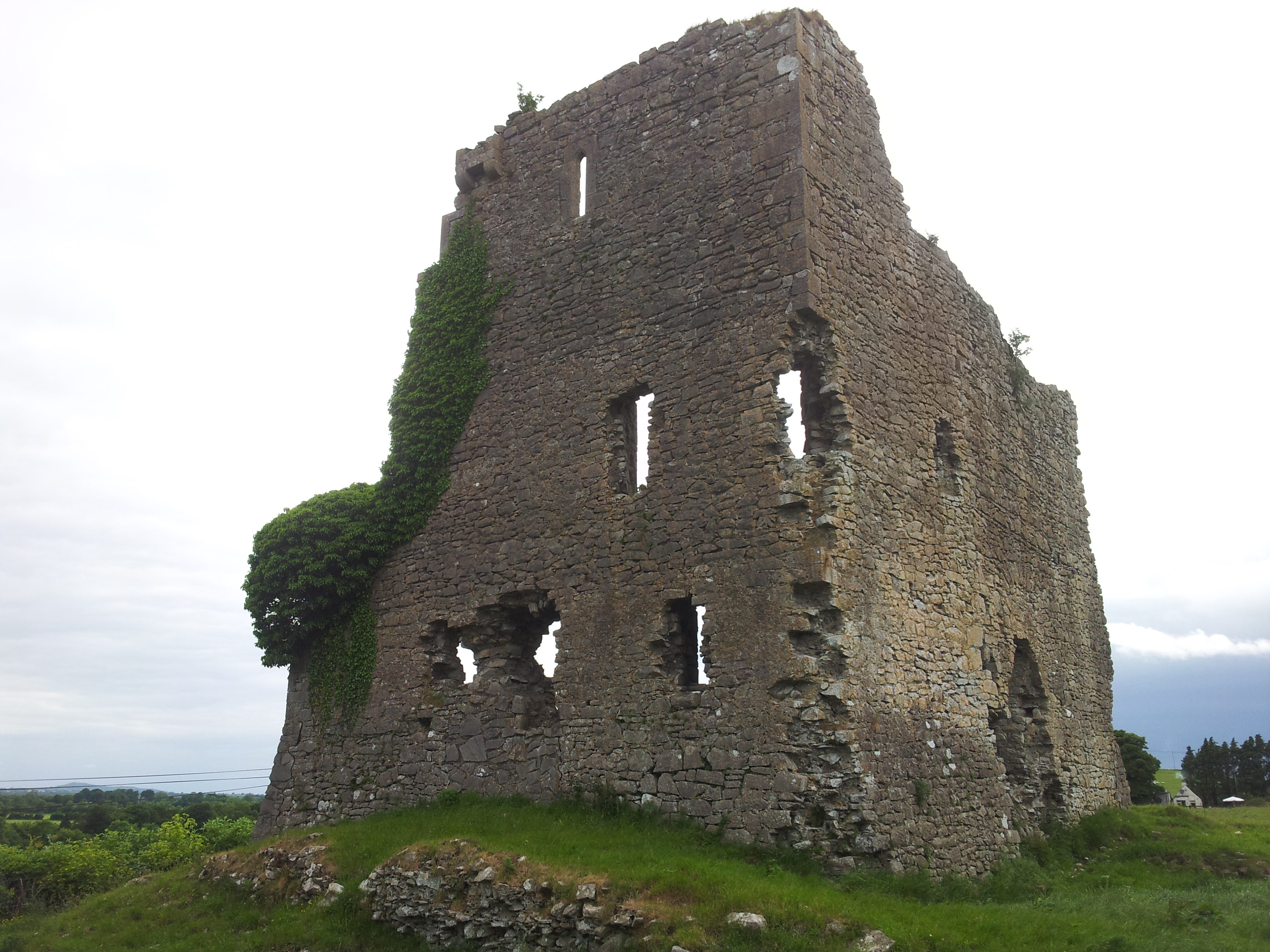 01 carrick castle co kildare visions of the past for Kildare castle