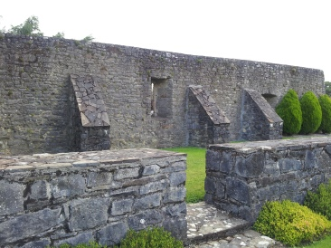 02. Wells Medieval Church, Co. Carlow