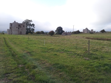 01. Ballyloughan Castle, Co. Carlow