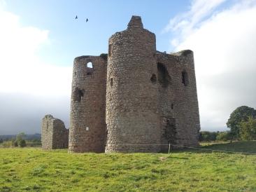 02. Ballyloughan Castle, Co. Carlow