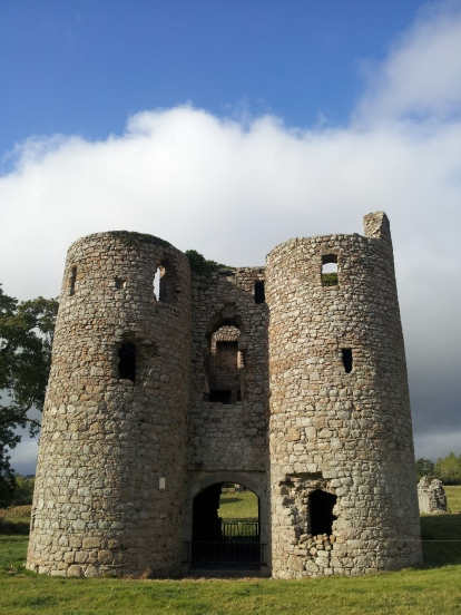 03. Ballyloughan Castle, Co. Carlow