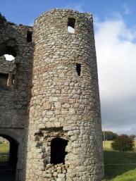 04. Ballyloughan Castle, Co. Carlow