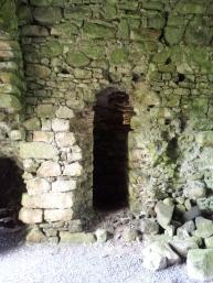06. Ballyloughan Castle, Co. Carlow
