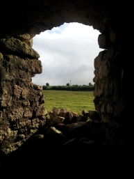 07. Ballyloughan Castle, Co. Carlow