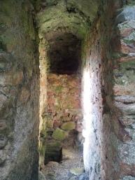 12. Ballyloughan Castle, Co. Carlow