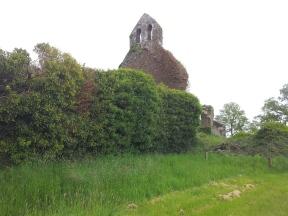 13. Abbeyshrule Abbey, Co. Longford