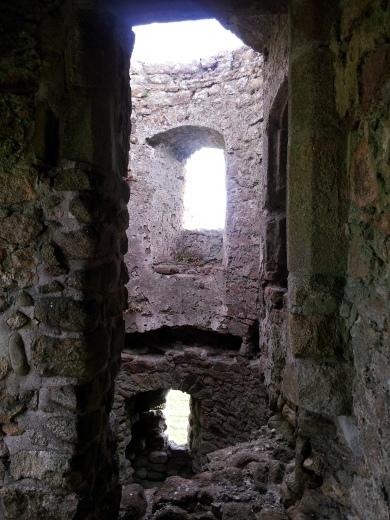 15. Ballyloughan Castle, Co. Carlow