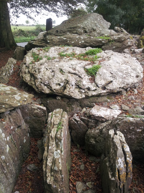 15. Labbacallee Wedge Tomb, Co. Cork