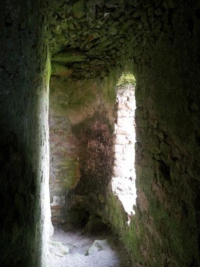 16. Ballyloughan Castle, Co. Carlow
