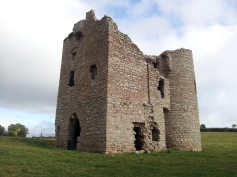 18. Ballyloughan Castle, Co. Carlow