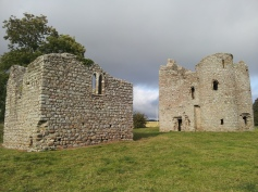 19. Ballyloughan Castle, Co. Carlow