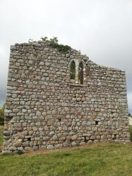 20. Ballyloughan Castle, Co. Carlow (2)