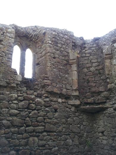 21. Ballyloughan Castle, Co. Carlow