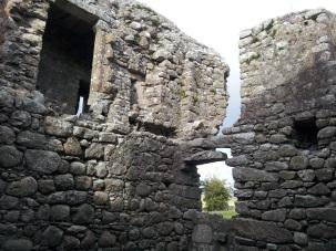 23. Ballyloughan Castle, Co. Carlow