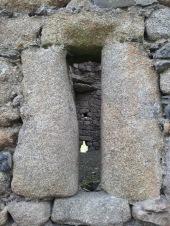 24. Ballyloughan Castle, Co. Carlow