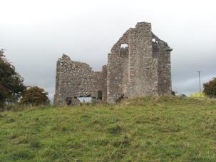 25. Ballyloughan Castle, Co. Carlow