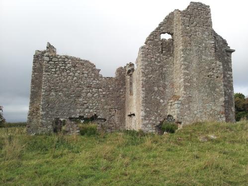 26. Ballyloughan Castle, Co. Carlow