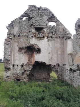 27. Ballyloughan Castle, Co. Carlow